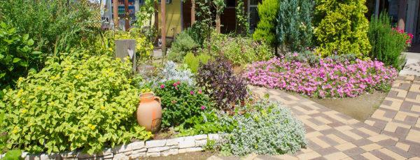 ジェラテリア・レガーロ の 花壇