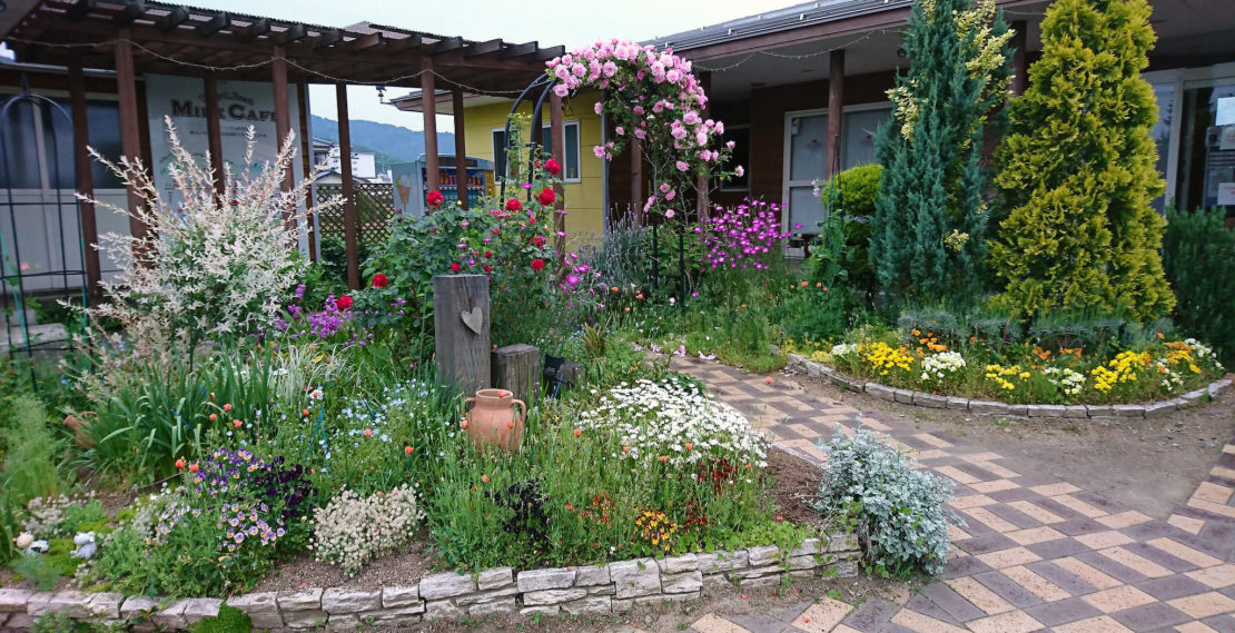 ジェラテリア・レガーロ の花壇